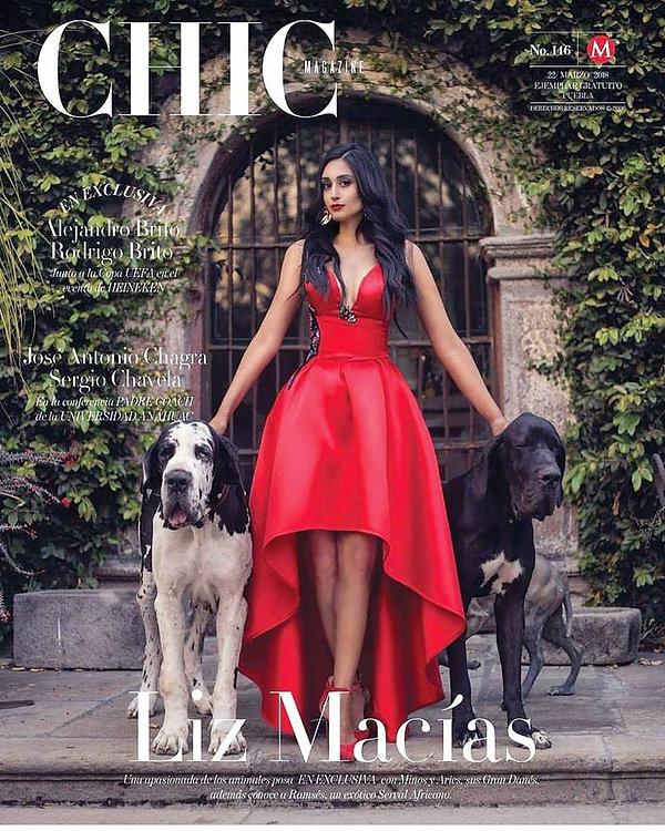 Perros Gran Danes Revista Chic.jpg