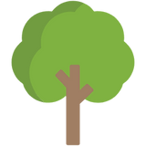 tree-1578.png