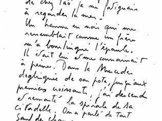 Jacques Higelin : témoignages (1995)