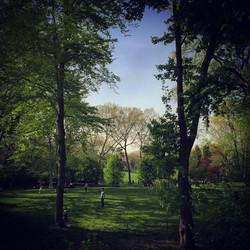 central park green