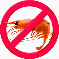 avoid shellfish