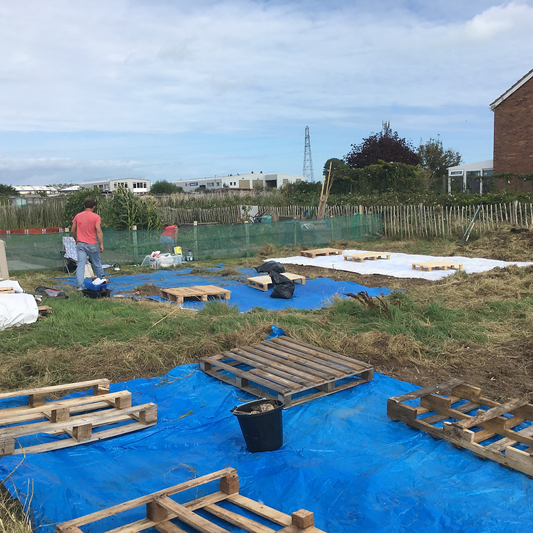 Big Dig Allotment workday