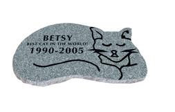 Pet Cat Grey Betsy