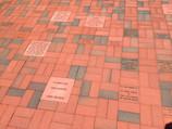 Bricks in Walkway