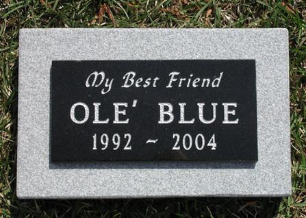 Ole Blue