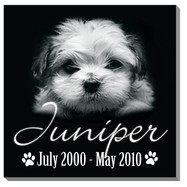 Juniper Pet Tile