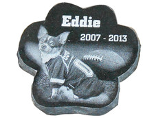 Eddie Pet Paw