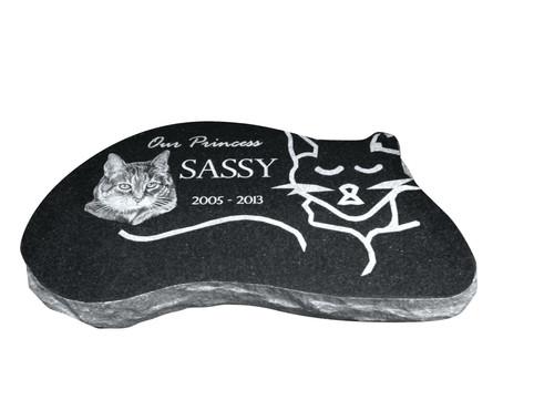 Pet Cat Black Sassy
