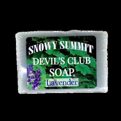 Devil's Club Soap Lavender