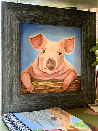Pig 8x8 Framed Canvas