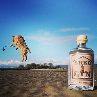 Gertie_Fancy Frolic Gin.jpg