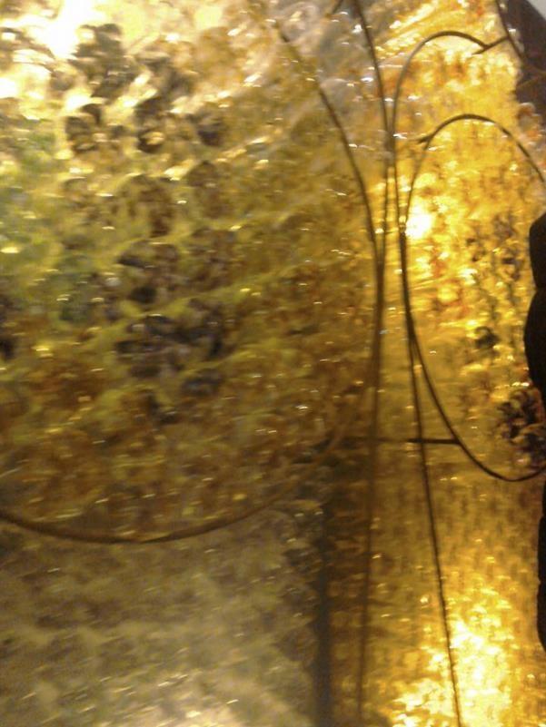 Litre of Light Lumiere London