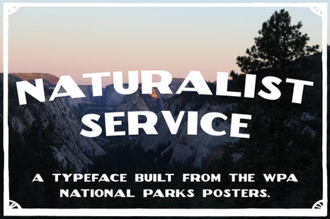 Naturalist Service Typeface Design