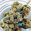 OG Story Rythm Cannabis