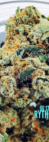 OG Story - Rythm Cannabis