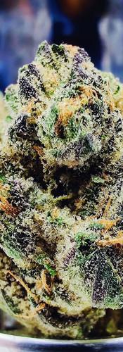 Royal Wedding Cannabis - This Is Strane
