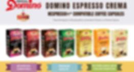 PS---Domino-mini-website-New.jpg