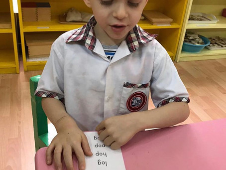 Language and Literacy Pink Series: Reading three-letter words