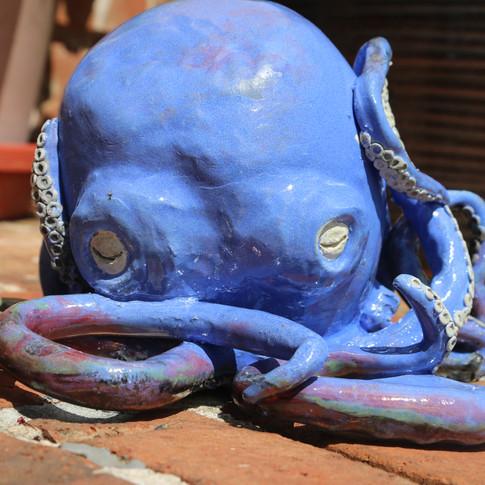 Octopus Raku
