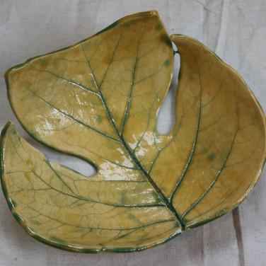 Tulip Poplar Leaf Bowl
