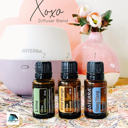 xoxo diffuser blend.PNG