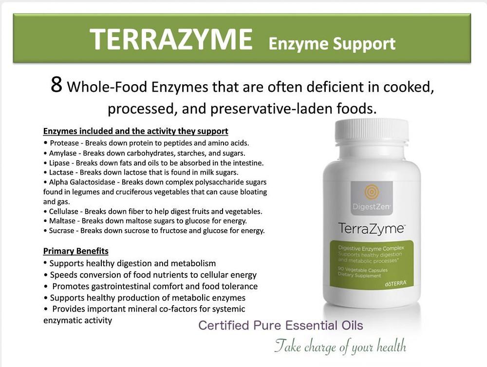 terrazyme-llv-lifelong-vitality-1024x772
