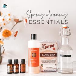 spring cleaner list.png