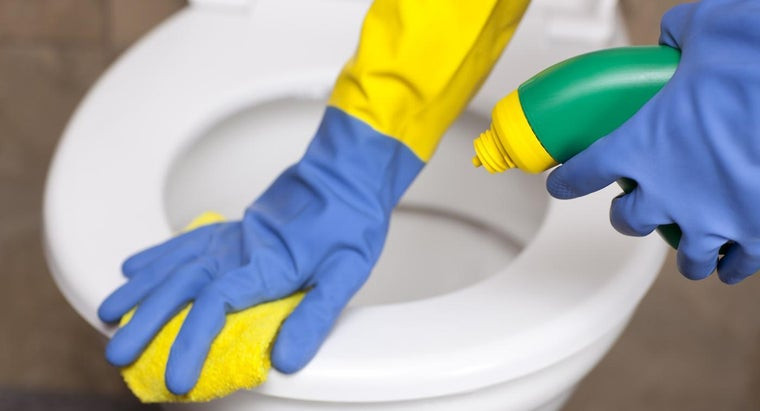 What Are the Main Ingredients in The Works Toilet Bowl Cleaner?