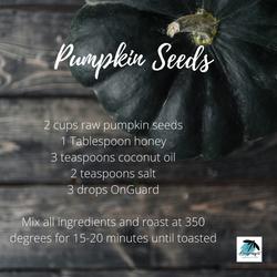 Pumpkin Seeds.png