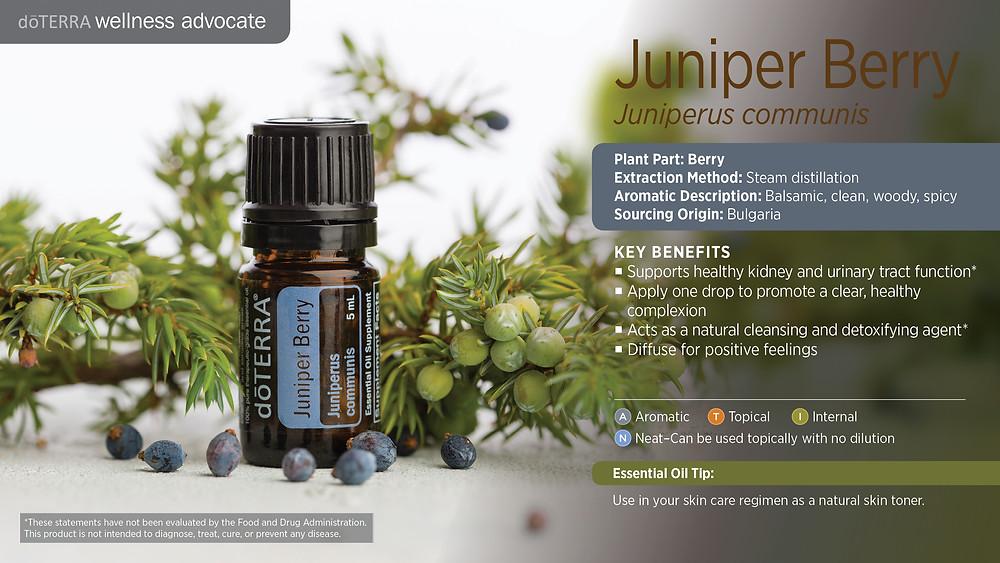 wa-juniper-berry