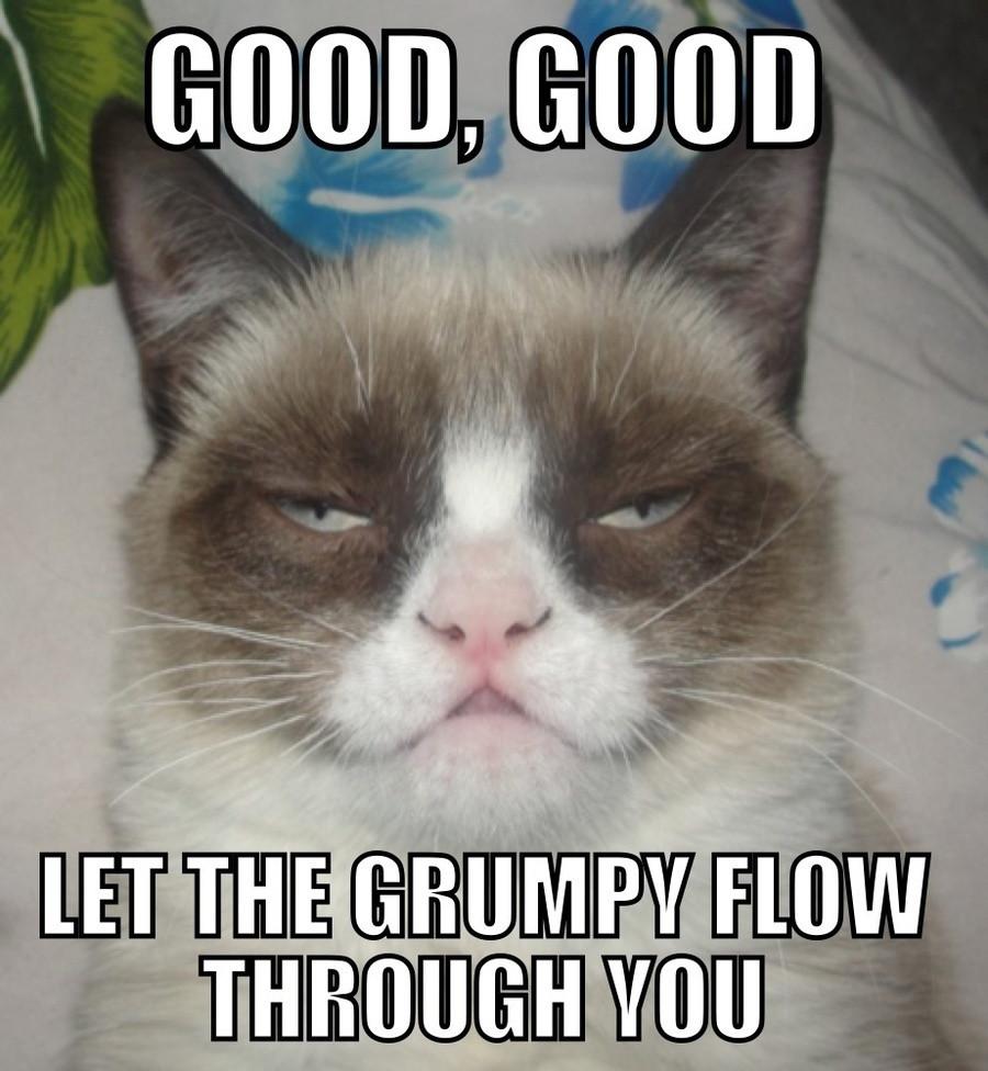 57141-grumpy-cat-darth-vader-meme-g-p5c0