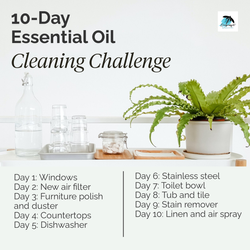 10 day cleaning challenge.png