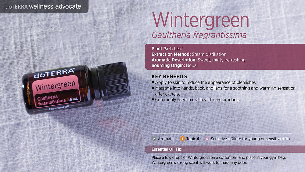 wa-wintergreen