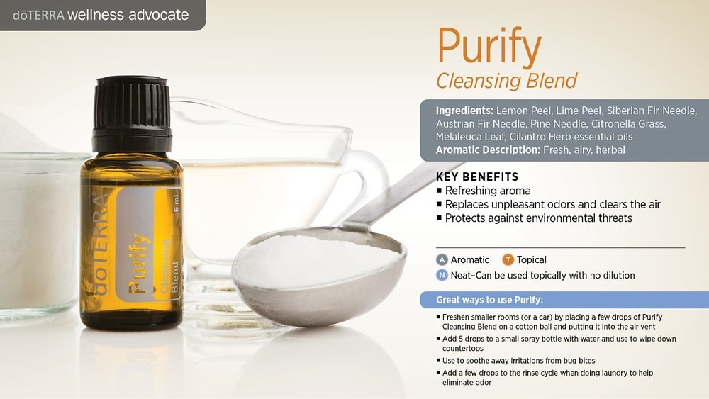 Purify_Product_Card