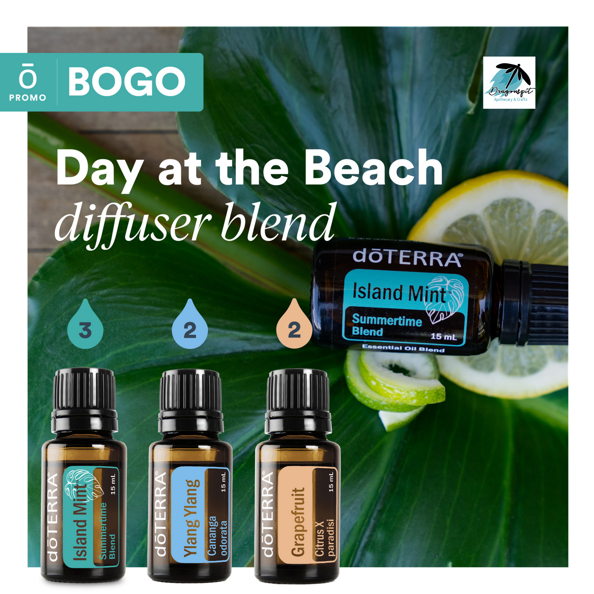 Beach day Diffuser blend with BOGO.png