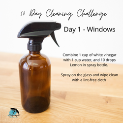 10 Day Cleaning Challenge Day 1 - Window