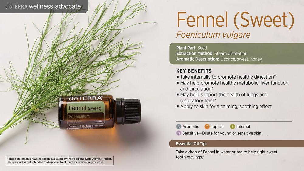wa-fennel