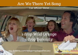 Are We There Yet Song
