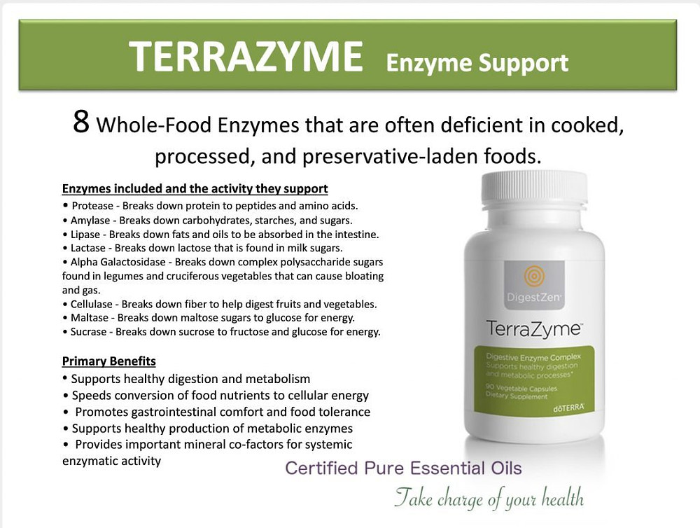terrazyme-llv-lifelong-vitality-1024x772