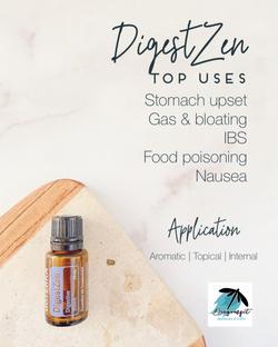 HE Top Uses DigestZen.png