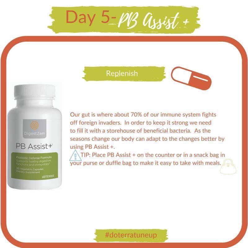 day 5 immunity
