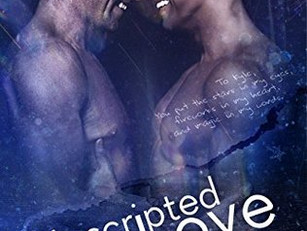 Road to Blissville (5 book series) by Aimee Nicole Walker