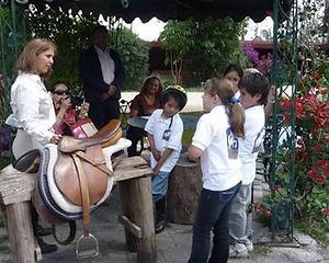 curso-verano-equitacion-morelia-caballos