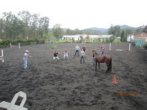 coaching-caballos-hipico-morelia (2).jpg