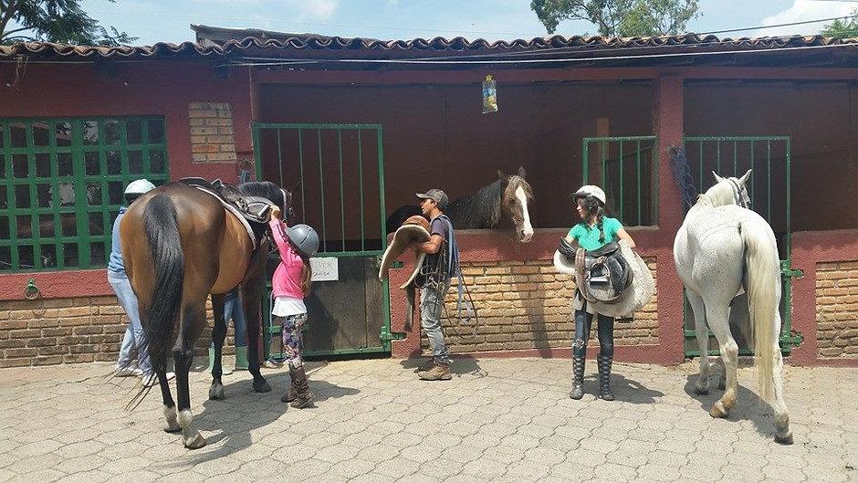 Hipico-morelia-curso-verano-equitacion-c