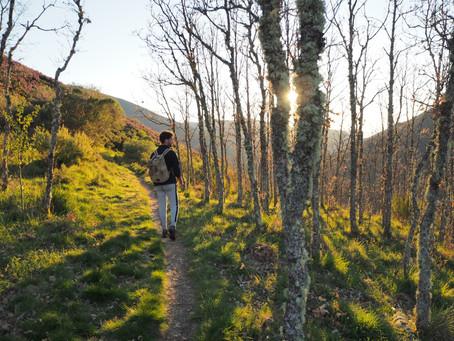 Ruta hasta el Gualtón de Carracedo, la cascada más alta del Bierzo