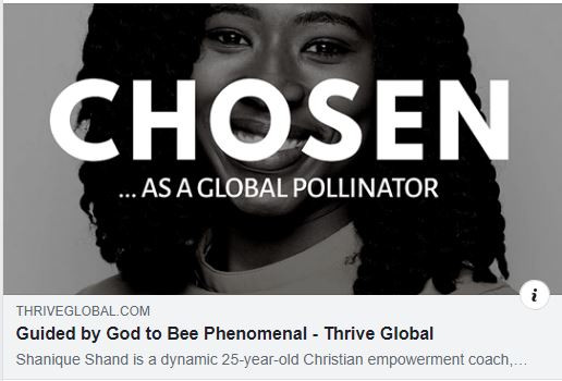 Guided by God to Bee Phenomenal