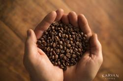 Karvan Coffee - hands - beans