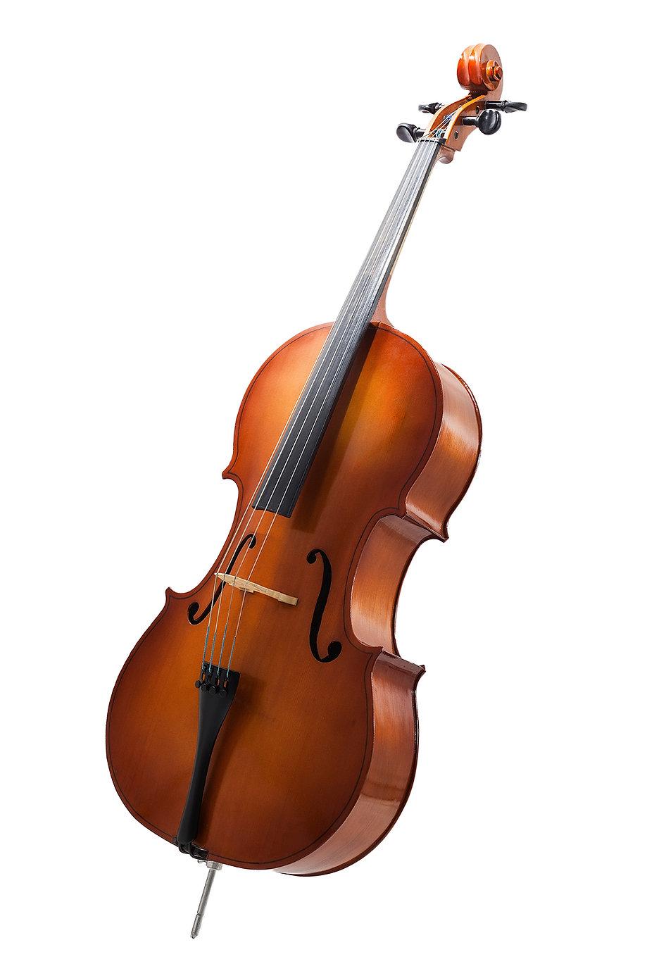 cello sm.jpg