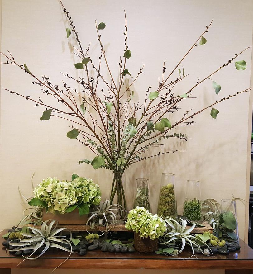 Botanical Display in Greens